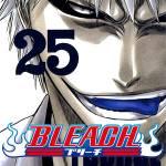 bleach-spoiler-4.jpg